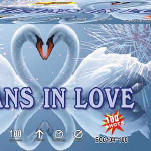 Пиробатерия,25sec,Ф20mm,100s, Swans in love